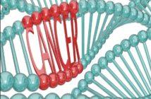 Гены рака