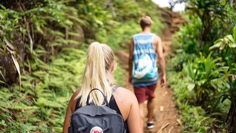 Туристы в тропиках