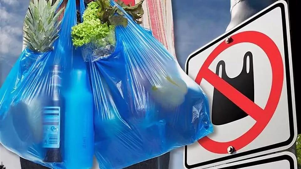 Запрет полиэтиленовых пакетов