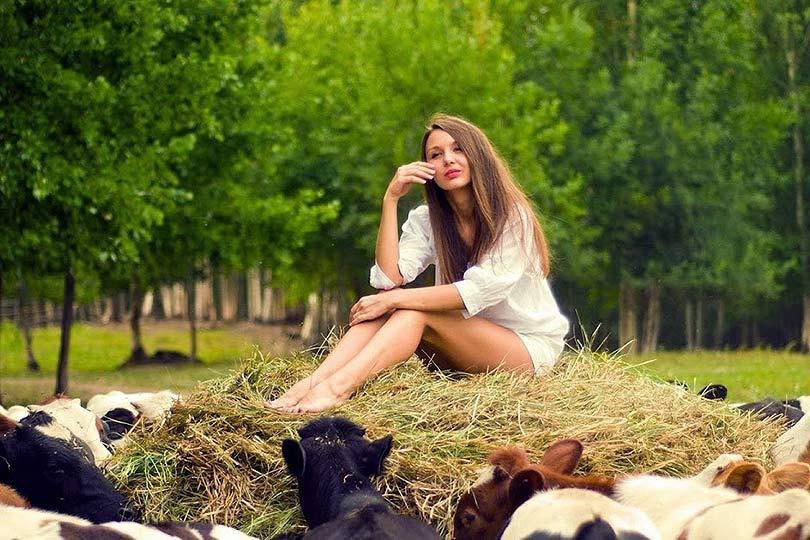 Девушка и коровы