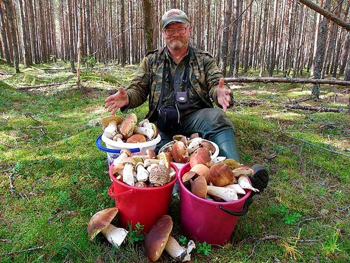 Мужик с грибами