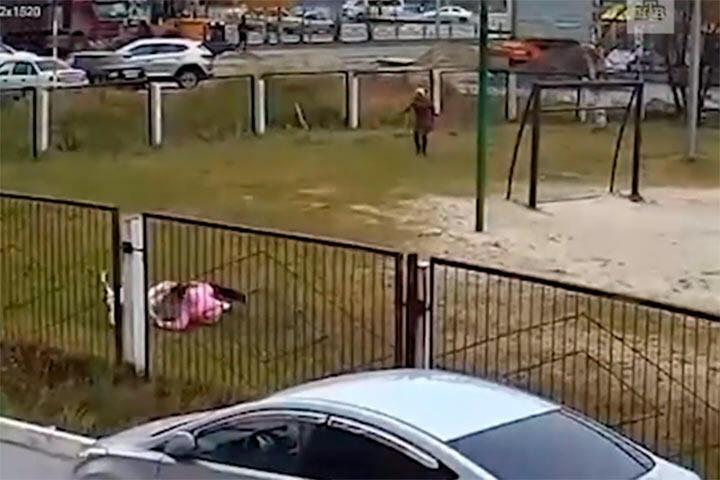 Нападение собаки во дворе школы