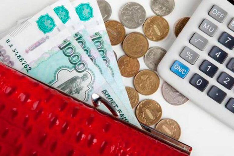В ЛДПР считают, что отмена НДФЛ для некоторых россиян поможет толкнуть российскую экономику вперёд