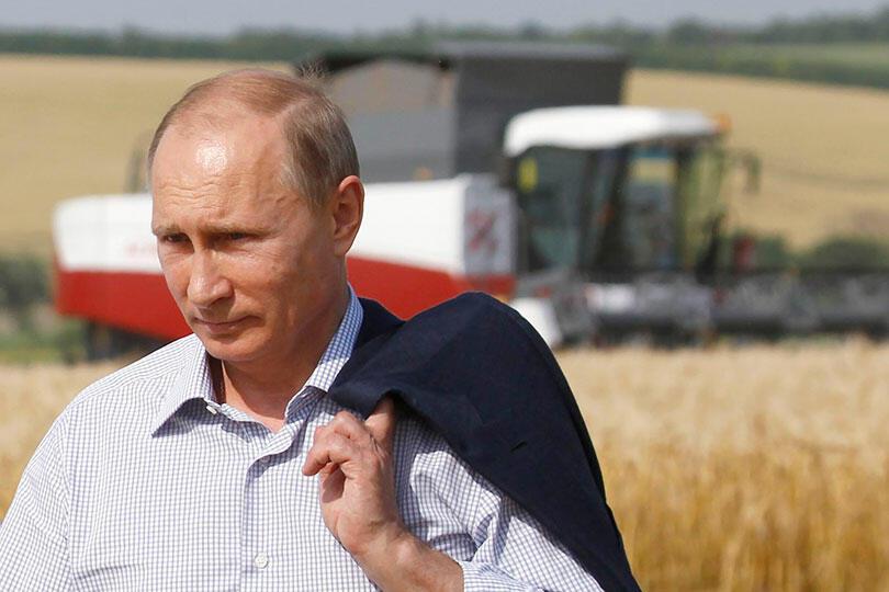 Путин в поле