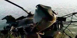 В Ростовской области разбился вертолет МИ-2, погиб один человек