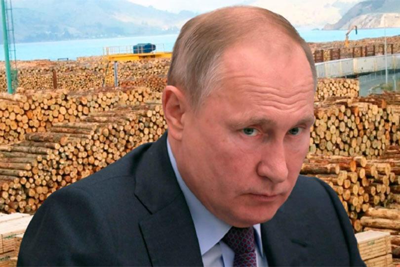 Путин спасает лес