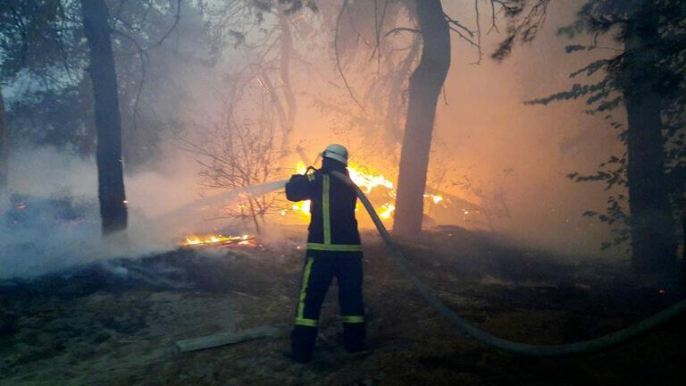 По меньшей мере девять человек погибли в результате лесных пожаров на востоке Украины