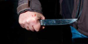В Кукморском районе Татарстана полицейские застрелили подростка, который ранил одного из них ножом