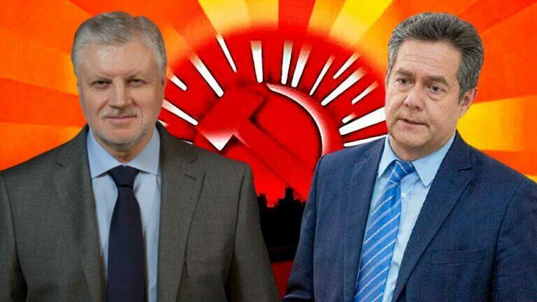 Лидер партии «Справедливая Россия» Миронов полагает, что Платошкина удерживают под арестом незаконно