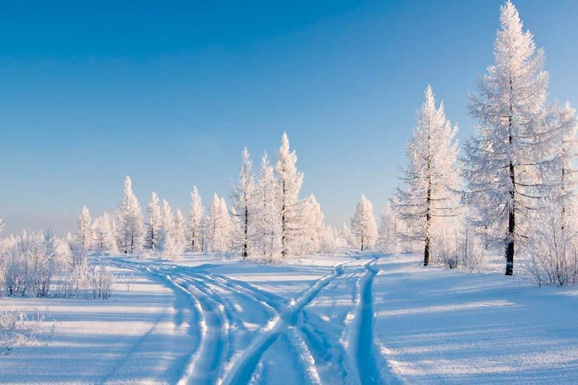 Природа в снегу