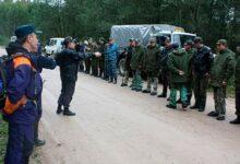 Поиски пропавшего в лесу главы минздрава Омской области