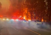 В Калифорнии горят леса