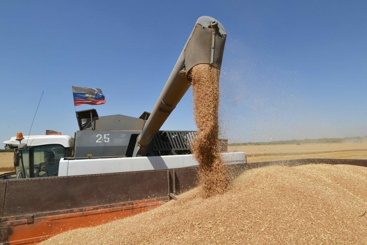 Зерновые экспортеры