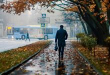 Холодная осень