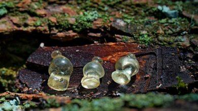 Древние стеклянные подвески
